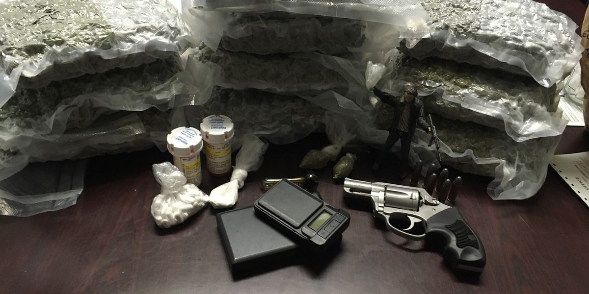 Goose Creek traffic stop leads to drugs, gun and ammo