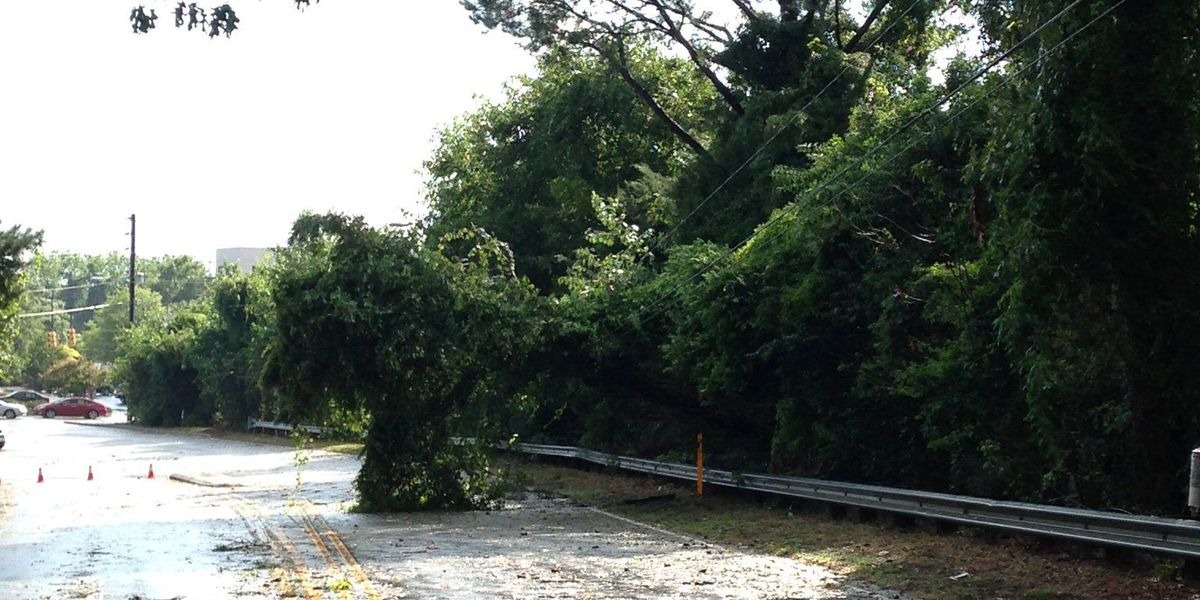 Mall Drive back open in N. Charleston after crews clear downed tree