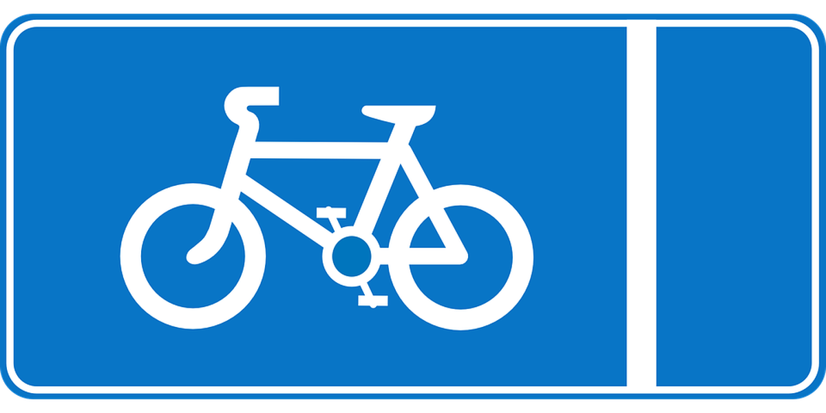 Charleston to have public bike share program