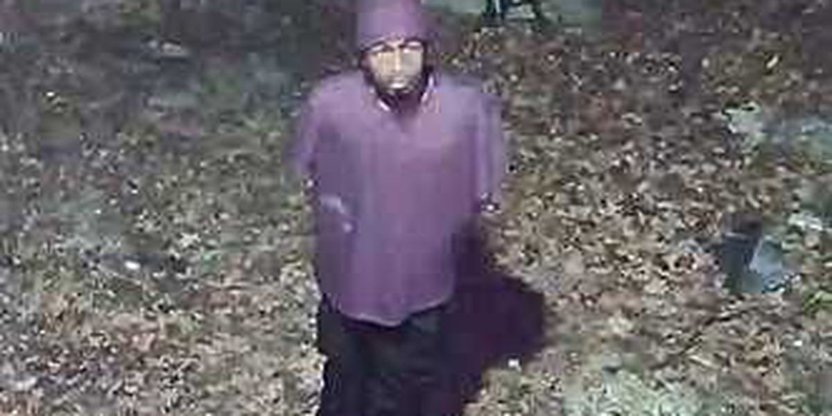 Goose Creek Police searching for attempted burglary suspect caught on video