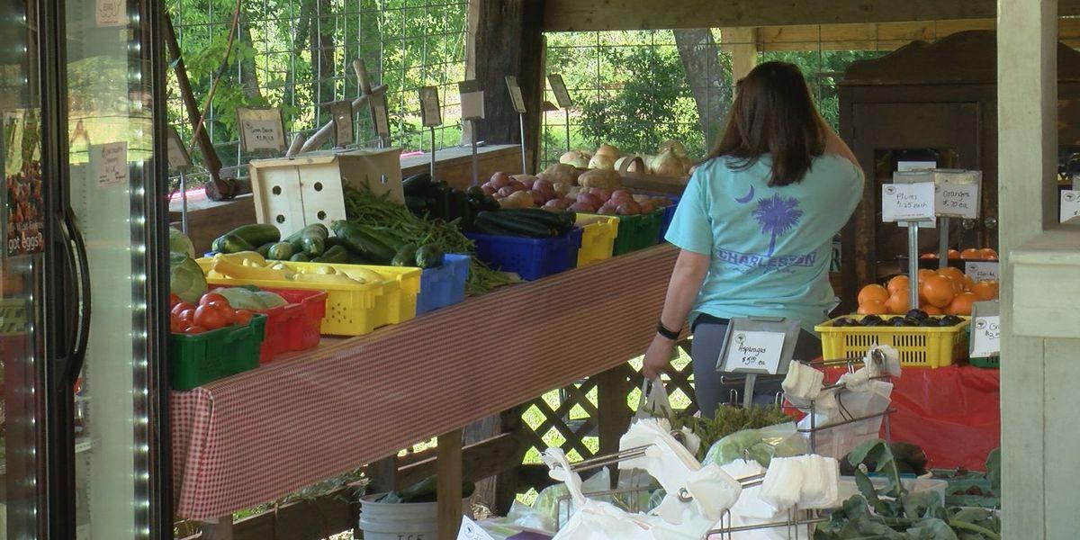 South Carolina farmers looking at alternative ways to sell produce