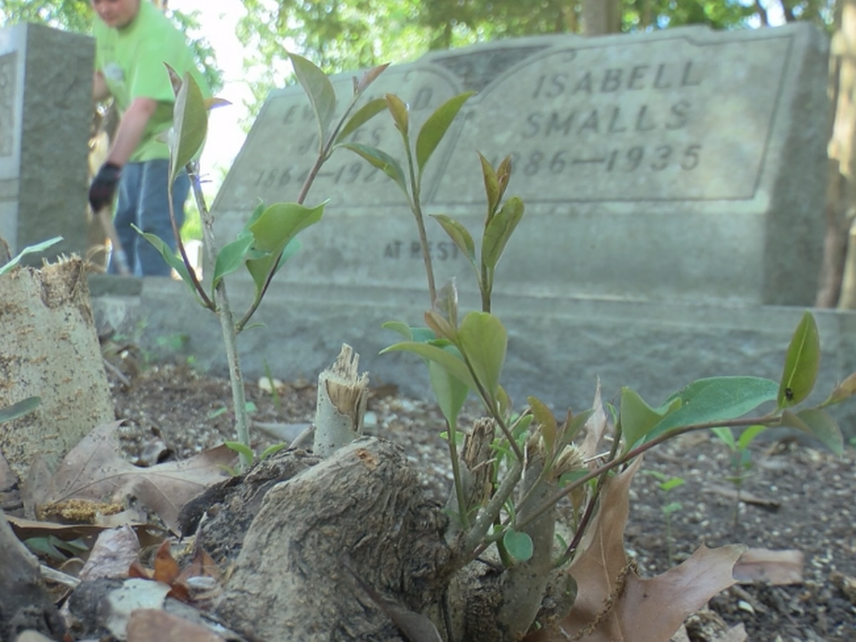 Volunteers finish clearing historic African American Cemetery lost in woods