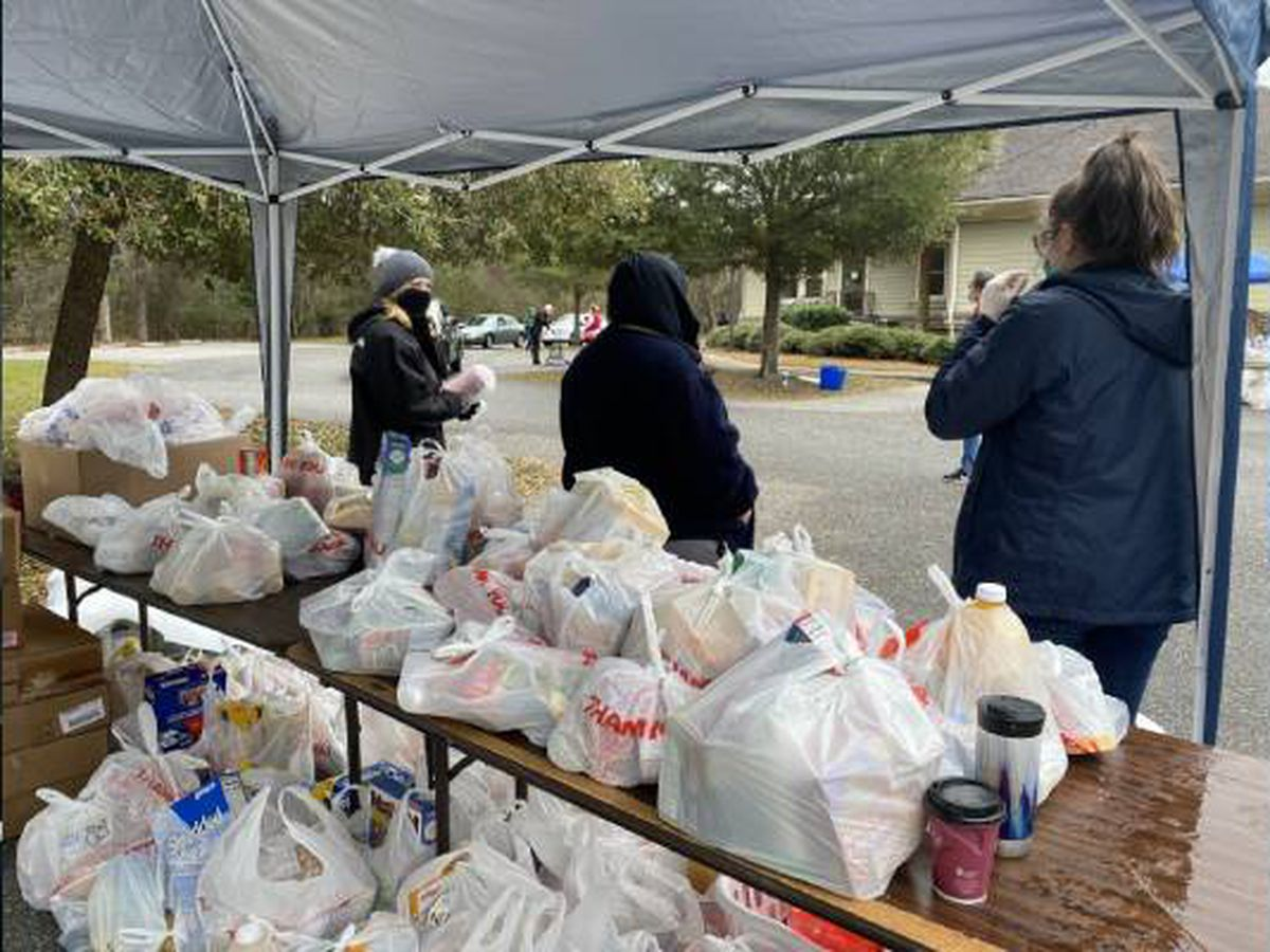 Food distribution hosted on Johns Island