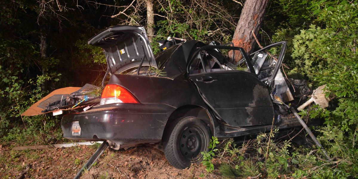 Man killed after car crashes into tree in Walterboro