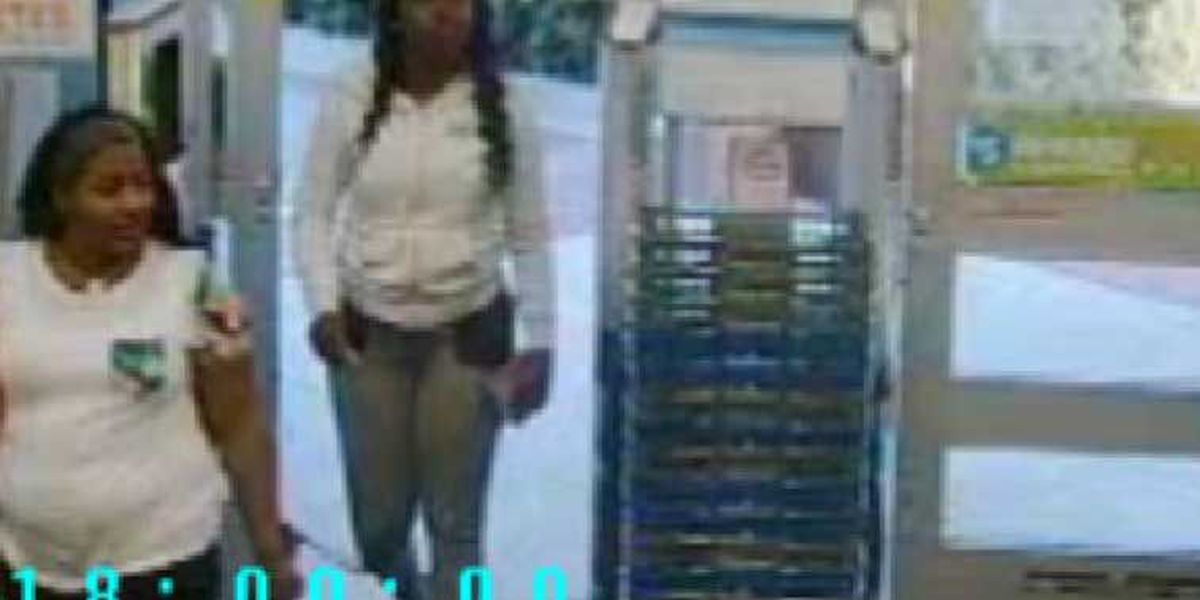 Mt. Pleasant police looking to identify two women in credit card fraud case