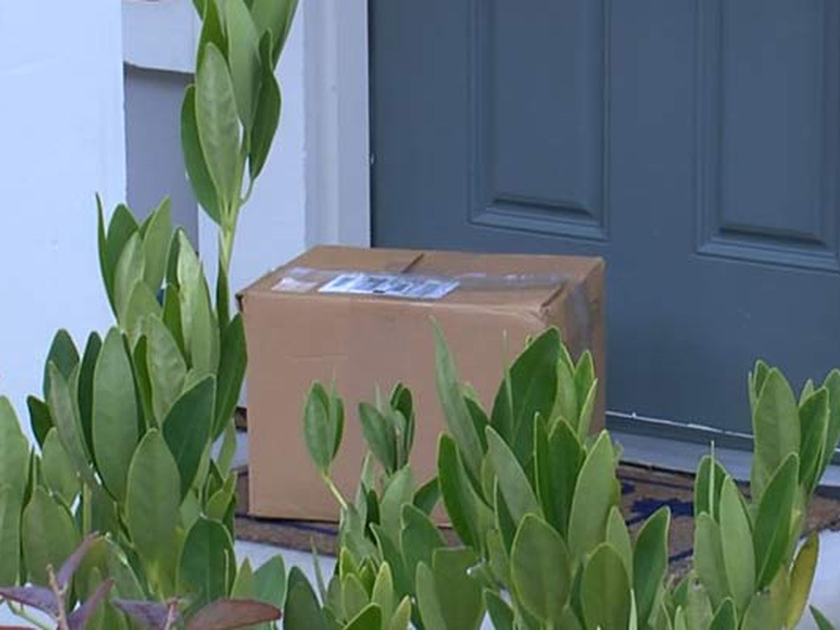South Carolina delays 5-year minimum for stealing packages