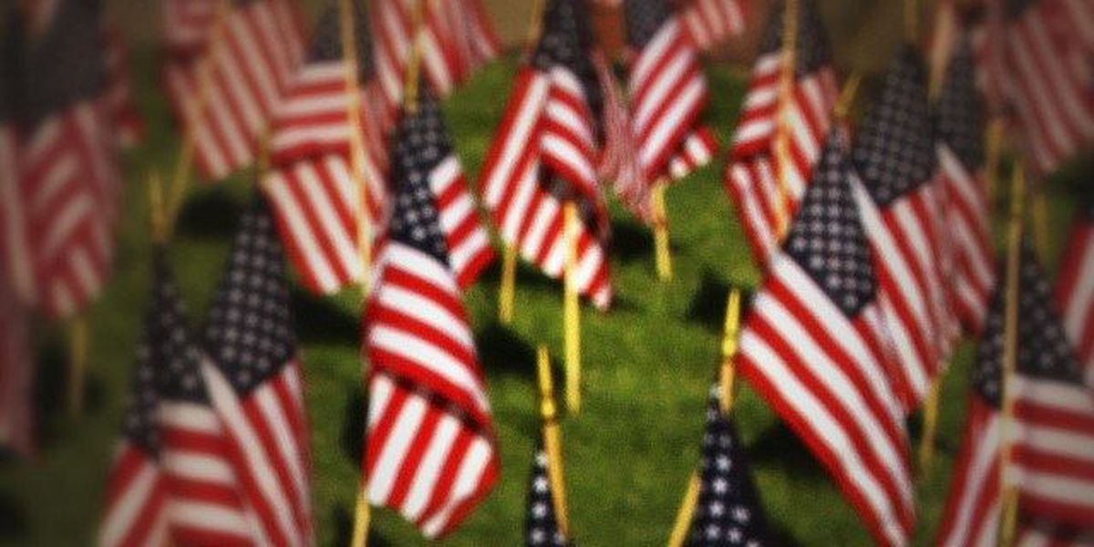 Honoring those who served: Veterans Day events guide