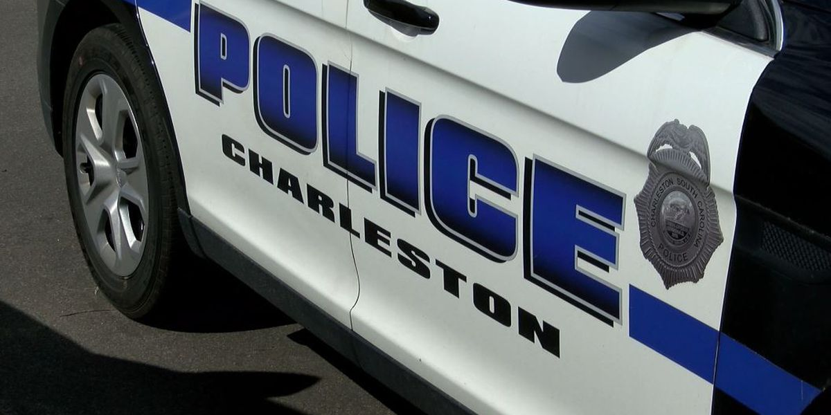 Group of College of Charleston professors call for police budget cuts