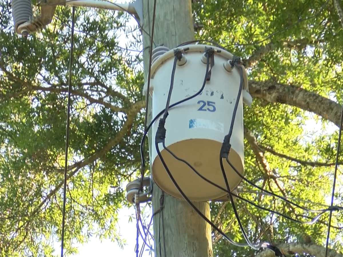 Mt. Pleasant considering more underground power lines following Hurricane Dorian