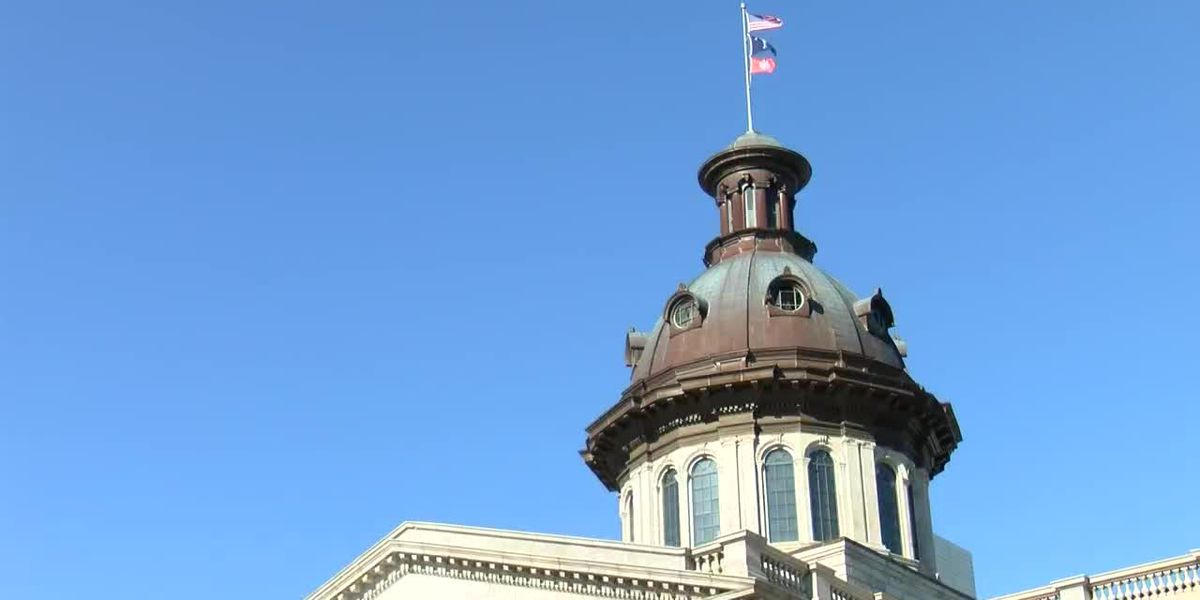 SC governor announces state's first child advocate to lead children social services