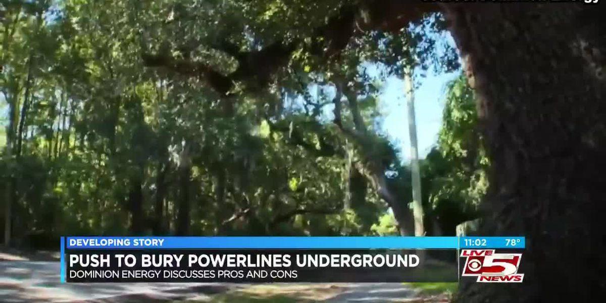 VIDEO: Neighborhoods push for underground powerlines; Dominion Energy explains pros and cons