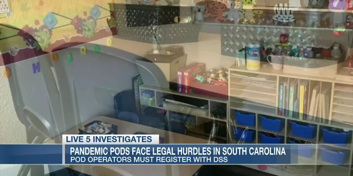 VIDEO: 'Pandemic Pod' organizers could face penalties if they operate without SC childcare license