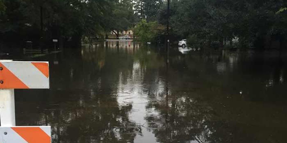 Williamsburg Co. officials urge voluntary evacuation along Black River