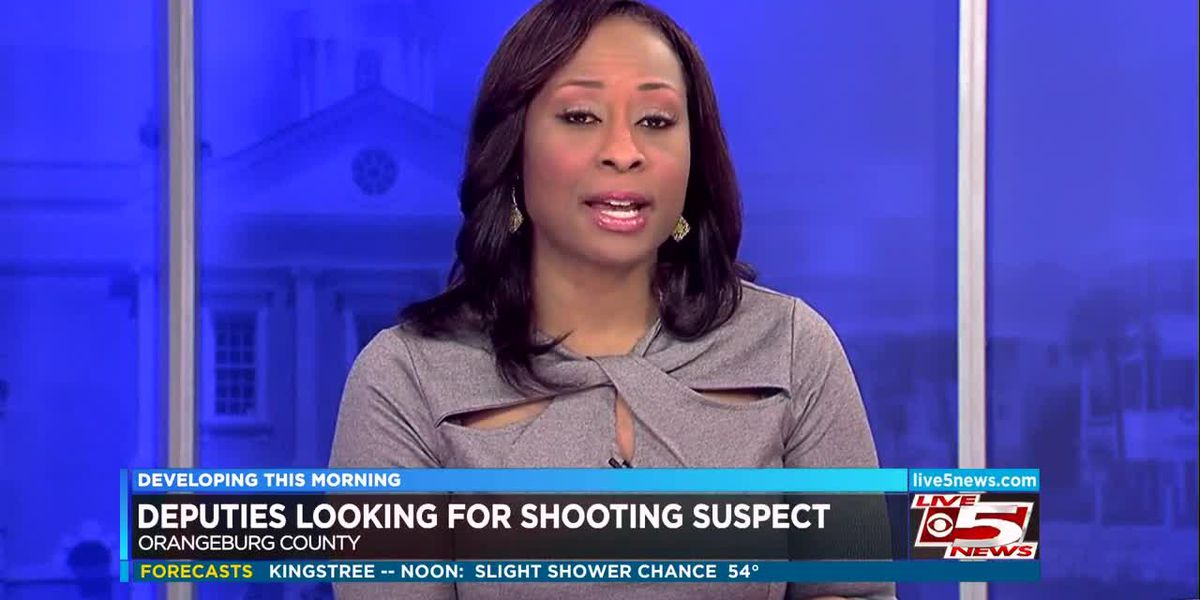 VIDEO: Deputies looking for Lowcountry shooting suspect