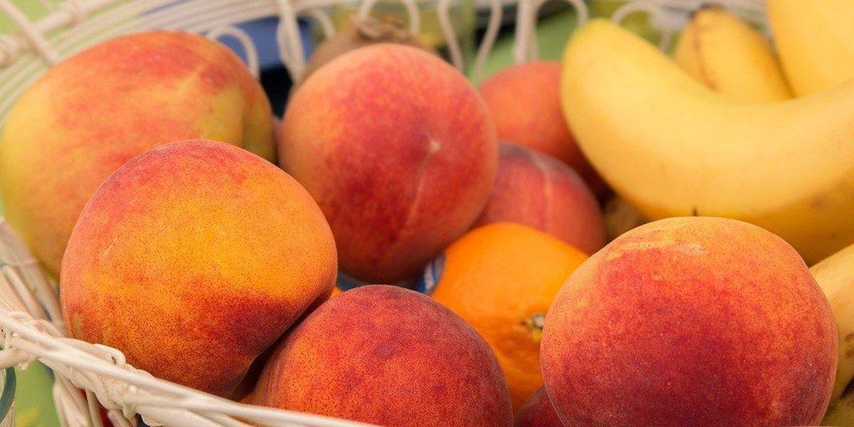 Sullivan's Island Farmers Market kicks off new season