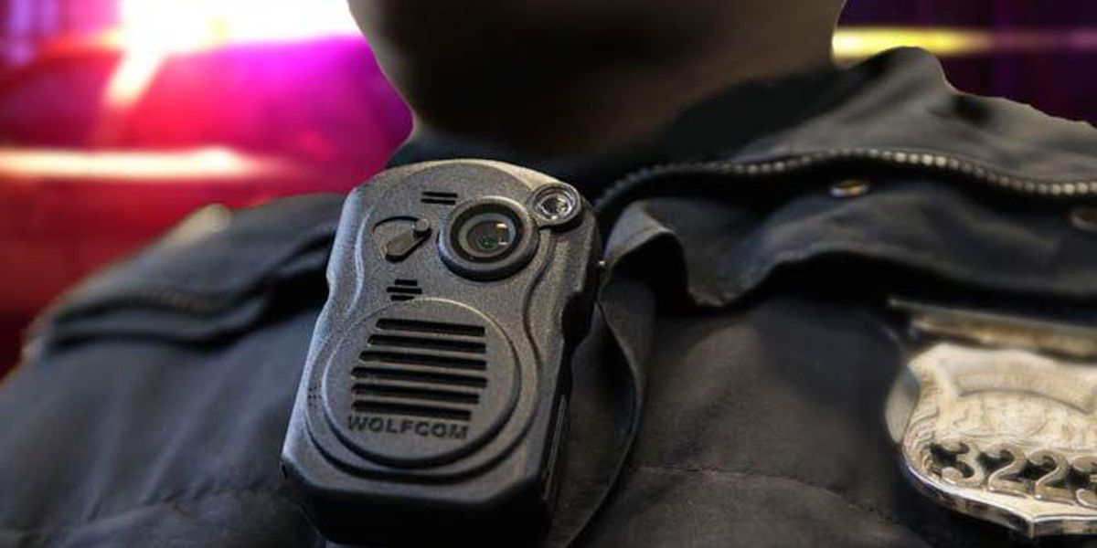 Senate to hold hearings on police body cameras