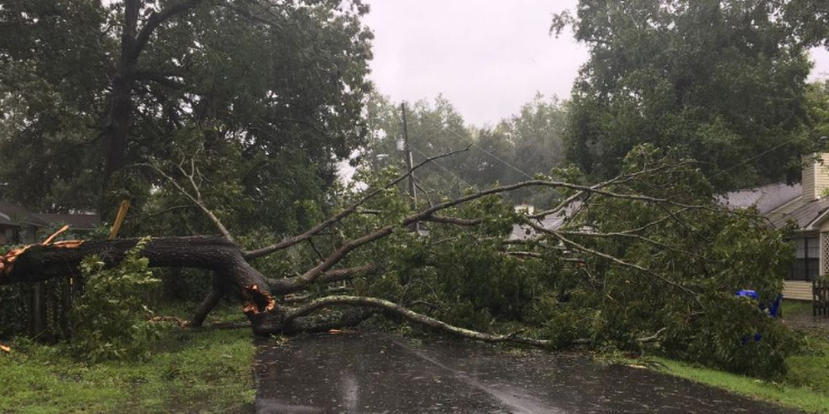 FIRST ALERT: Dorian leaves thousands out of power after hurricane skirts coast; breezy conditions continue