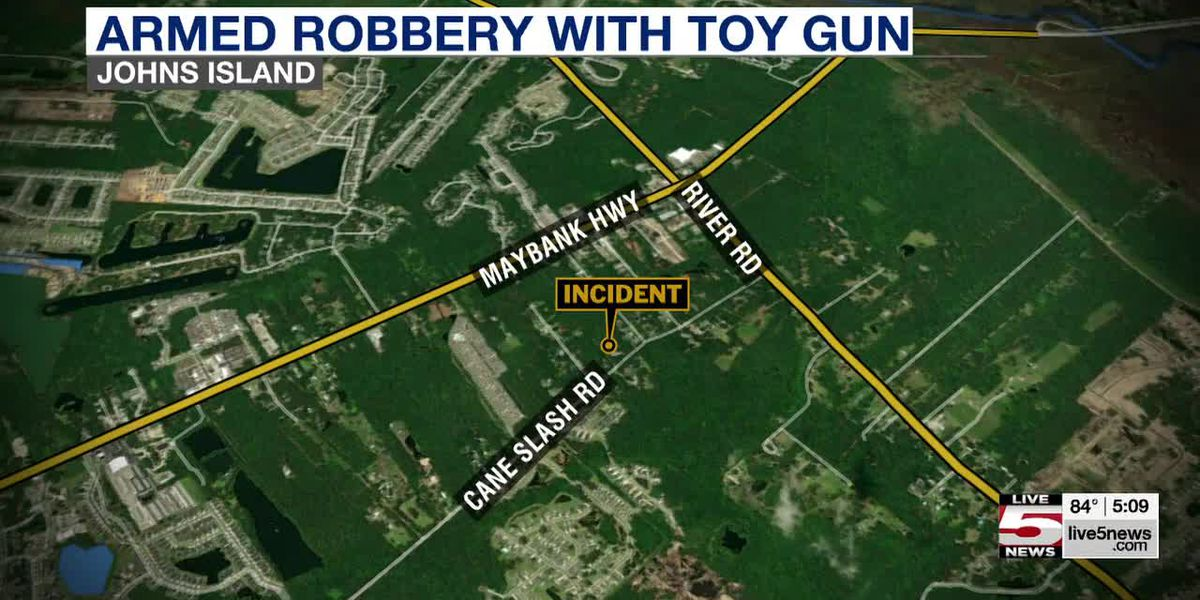 VIDEO: Deputies: Man attempts armed robbery with toy gun