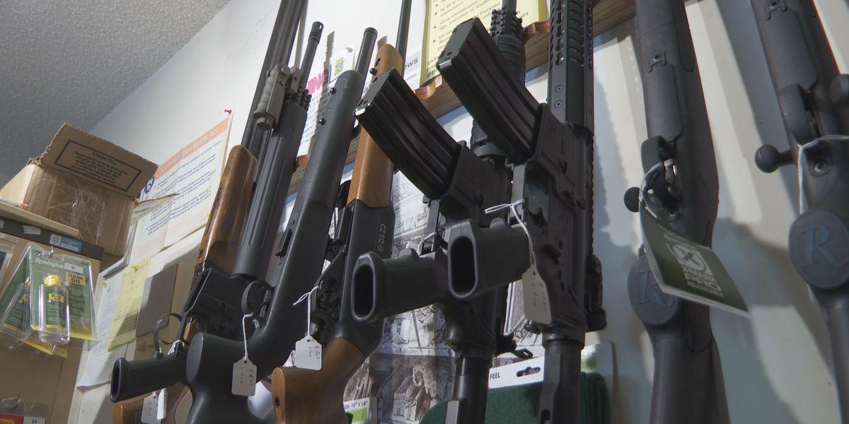GOP State Senators pushing 'Unorganized Militia' bill to strengthen gun rights