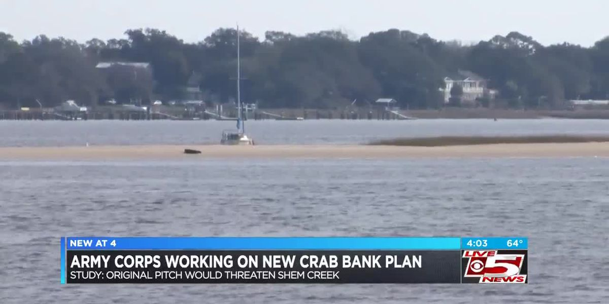 VIDEO: Charleston Army Corps to search for possible alternate crab bank solution