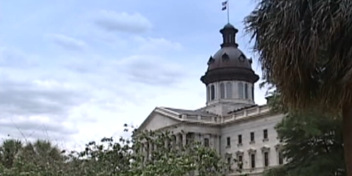 SC House Speaker creates Equitable Justice System and Law Enforcement Reform Committee