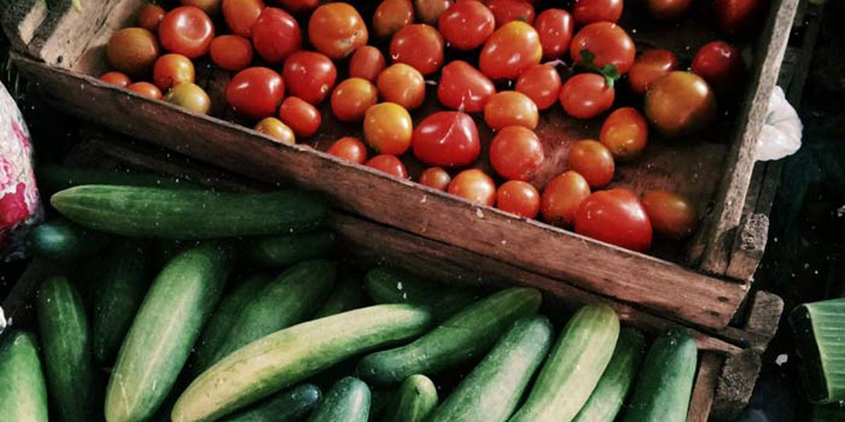 Charleston County Public Library to host produce giveaway