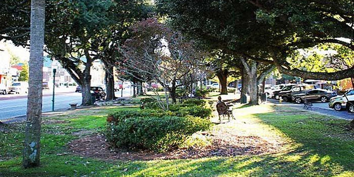 Summerville to unveil master plan for Hutchinson Square project