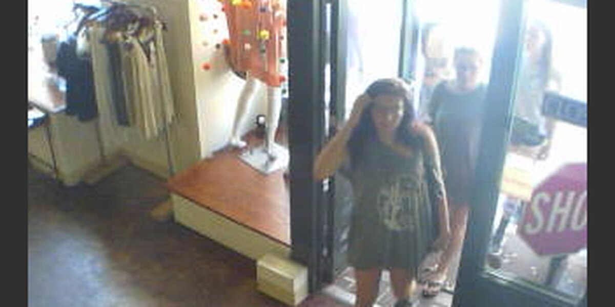 Police search for House of Sage shoplifting suspects