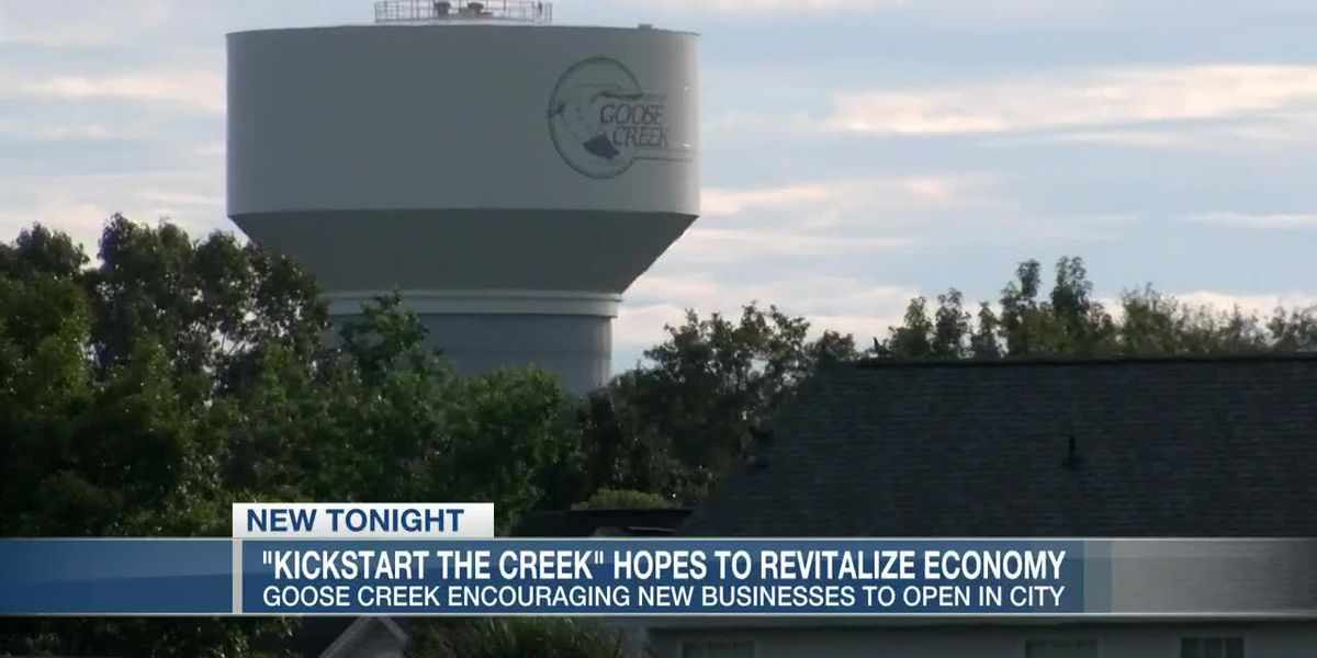 VIDEO: Goose Creek setting sights on growing business