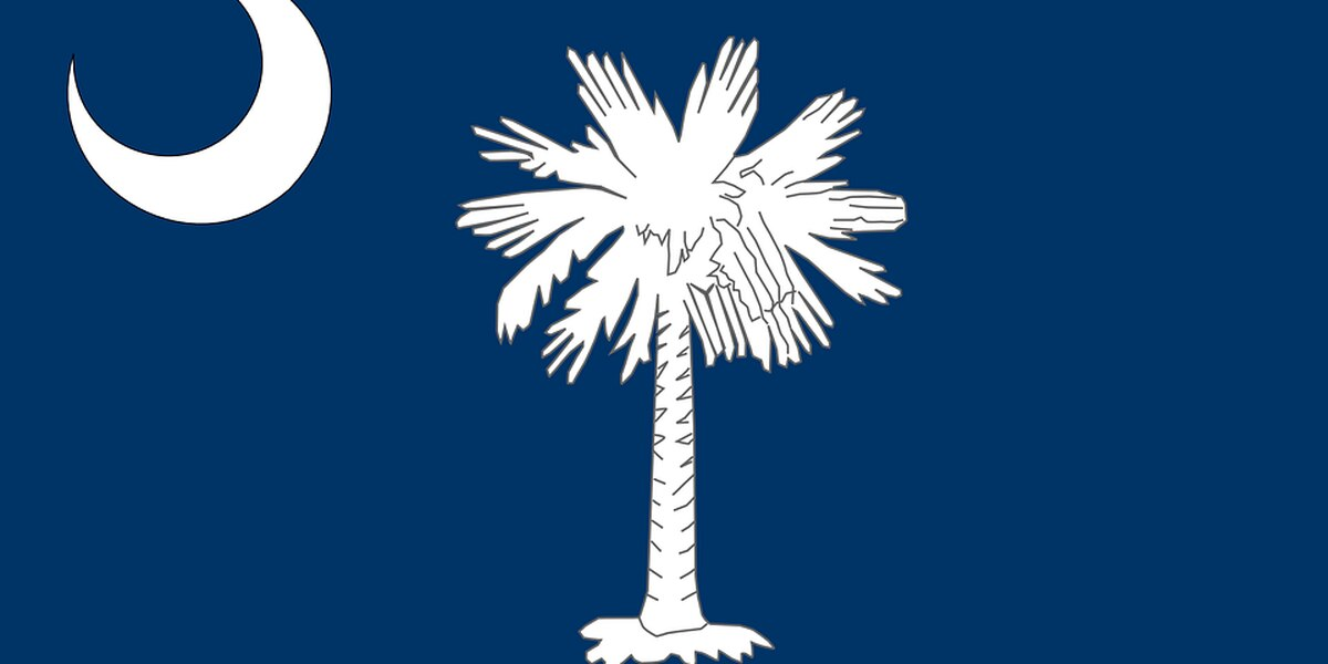 SC senate panel takes step toward uniform state flag design