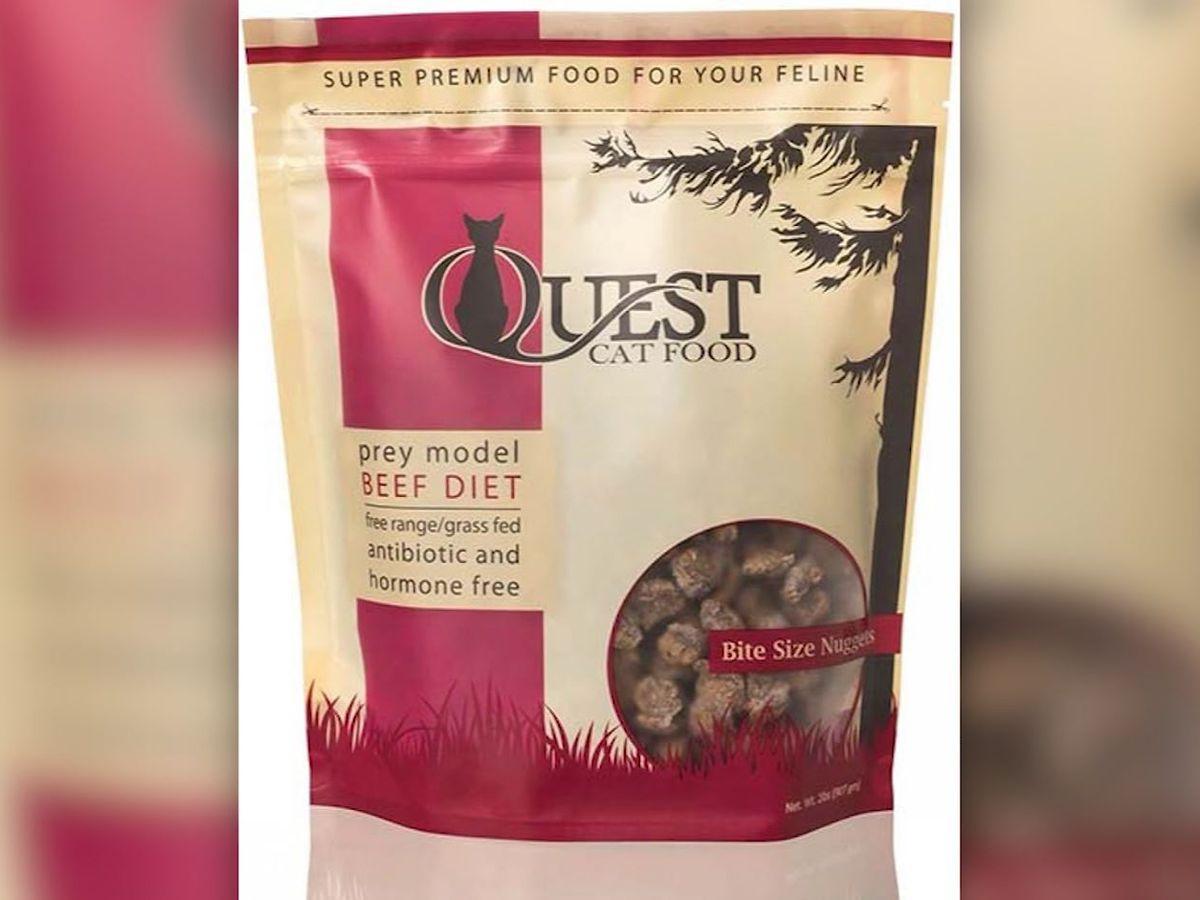 Cat food recalled over salmonella risk