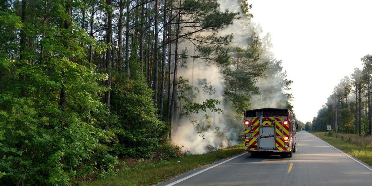 Crews extinguish small brush fires in Awendaw