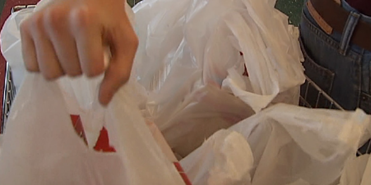 Folly Beach passes first reading of plastic bag ban