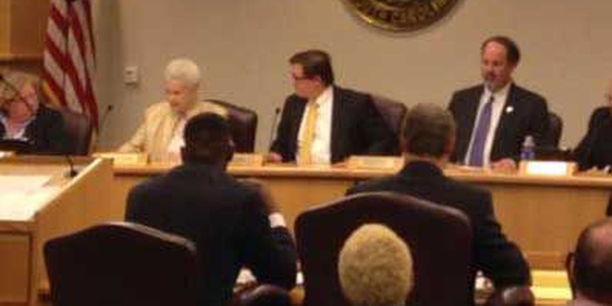 Charleston Co. Council votes Elliot Summey in as chairman
