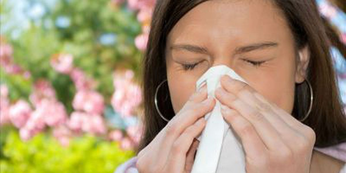 Charleston ranked 26th-worst for fall allergies