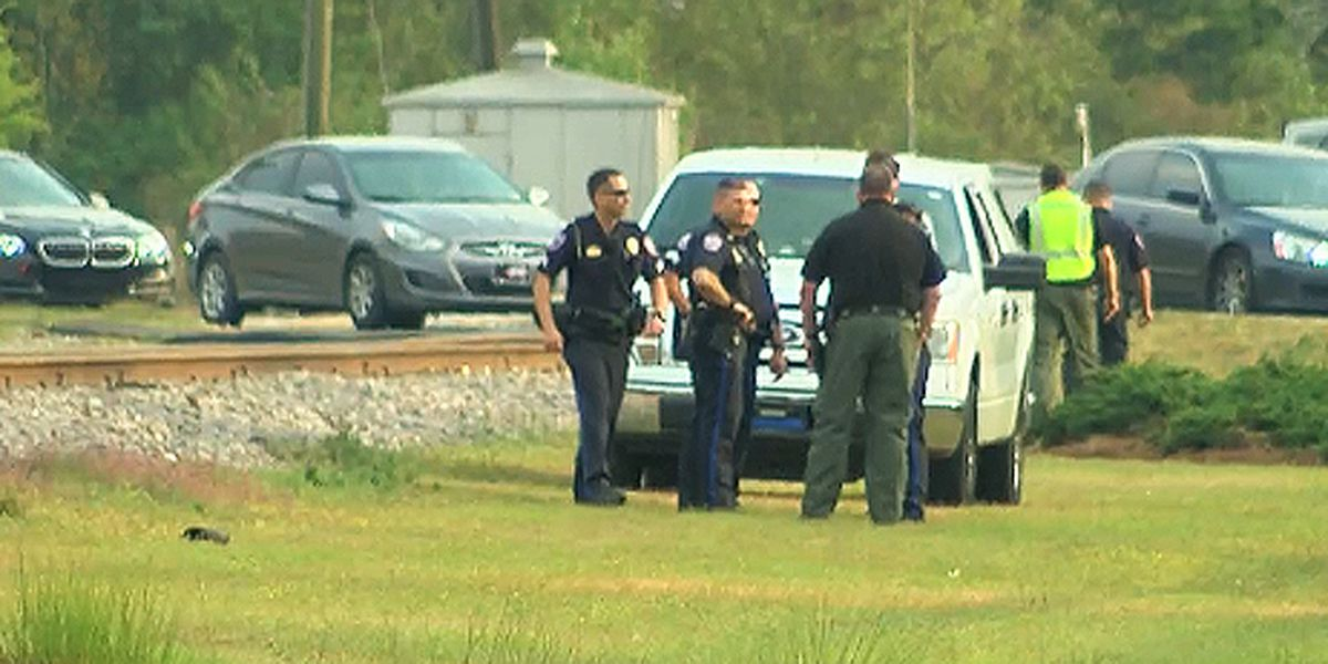 Police: Pedestrian fatally struck by train in Goose Creek