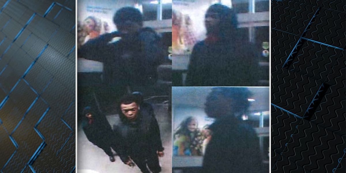 Deputies looking for suspects in Pawleys Island vehicle break-ins, thefts