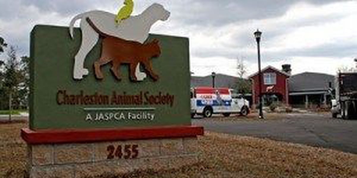 Charleston Animal Society has given away 500-plus pounds of pet food to federal workers