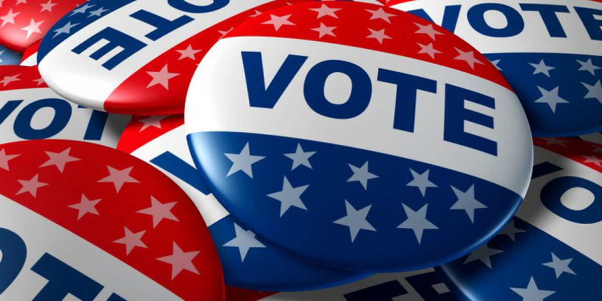 'Anyone else', Bill Murray, Mickey Mouse favorites among Charleston Co. write-in voters