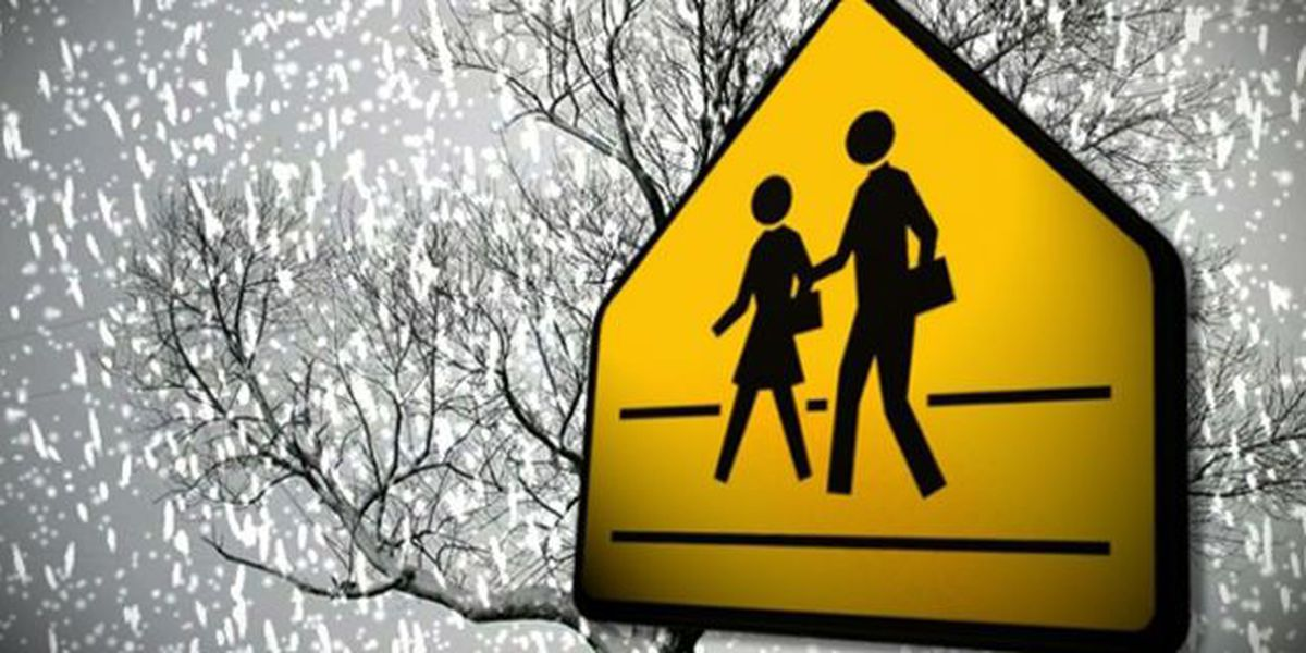 School districts make decisions on snow days