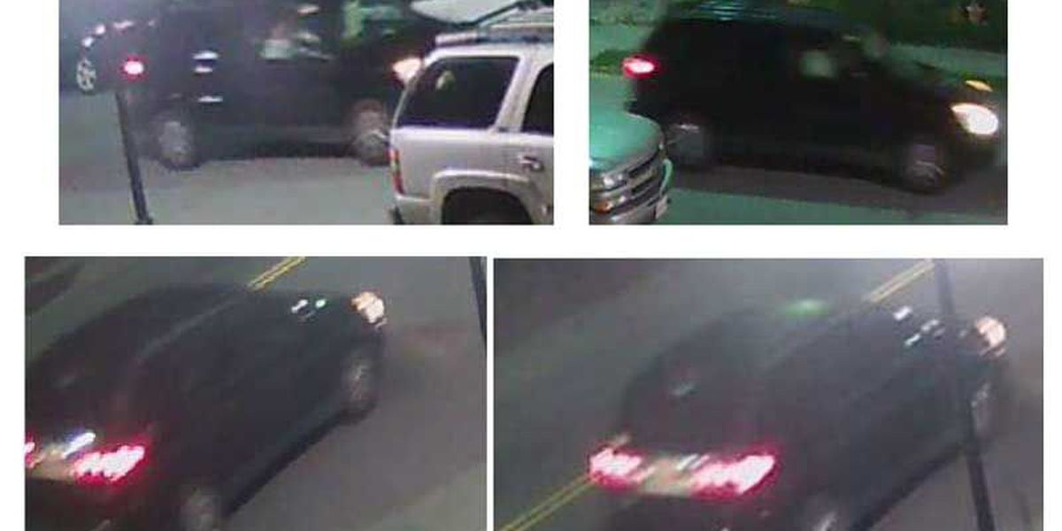 Charleston investigators searching for possible witnesses in King Street homicide