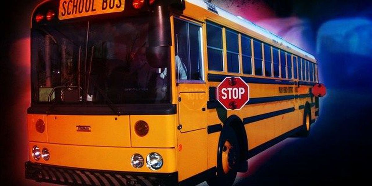 School bus swerves off road to avoid crash