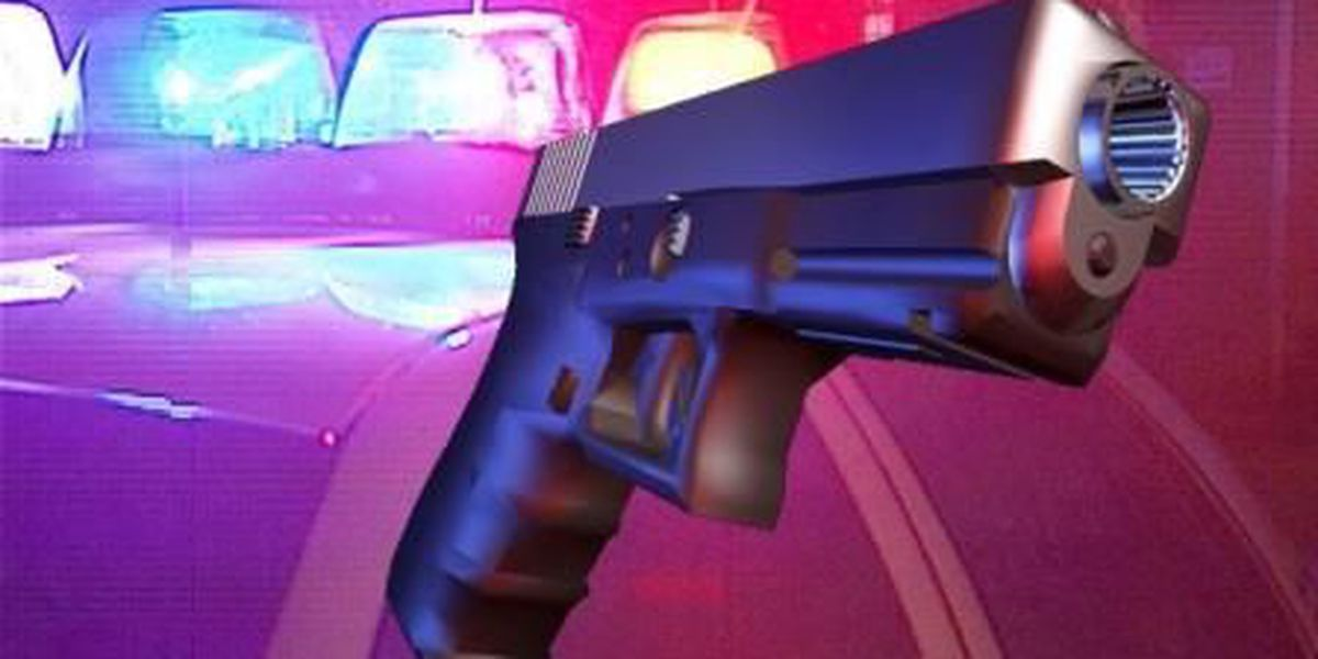 Authorities: SC, NC men smuggled guns to NYC on buses