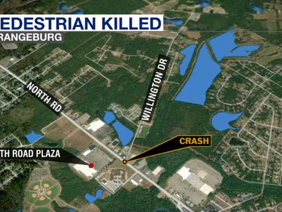 Troopers: Pedestrian struck and killed in Orangeburg County