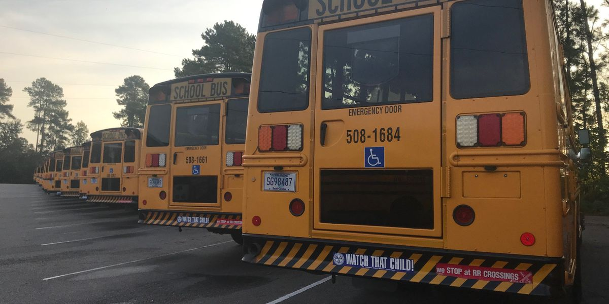 DD2 testing new bus routes, live tracking app