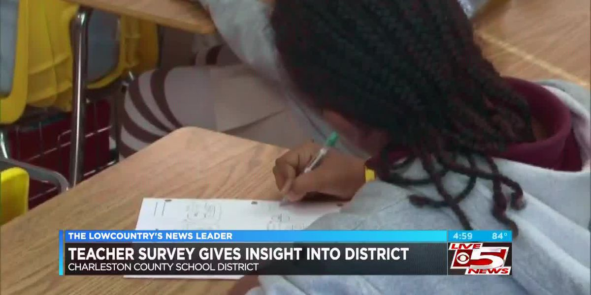 VIDEO: Newly released CCSD teacher survey gives insight into district