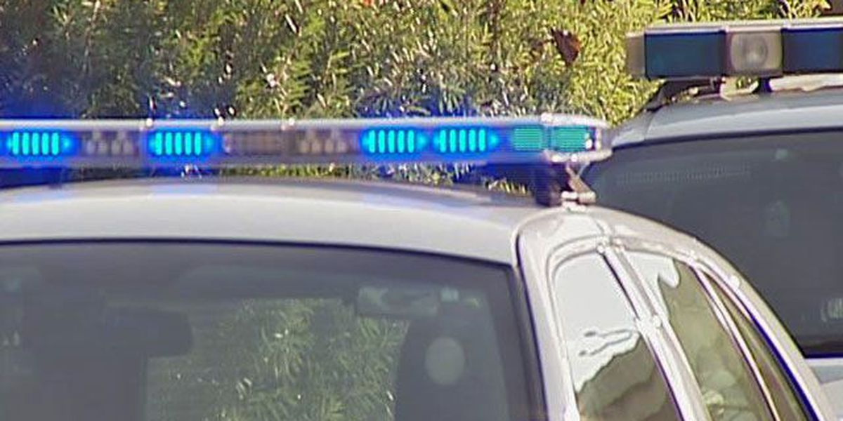 Council approves new cruisers for Summerville cops