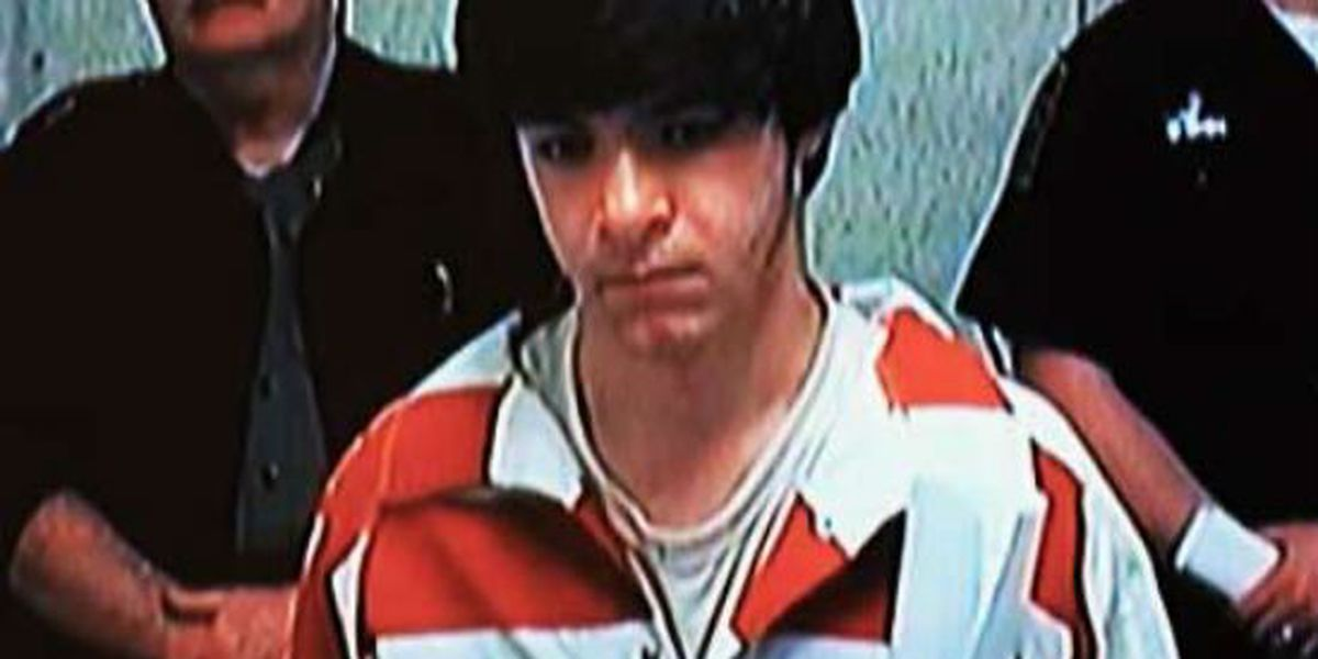 Teen indicted for murder in fatal Mt. Pleasant stabbing