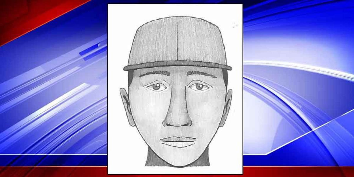 Sketch released of suspect wanted for assault, robbery in downtown Charleston