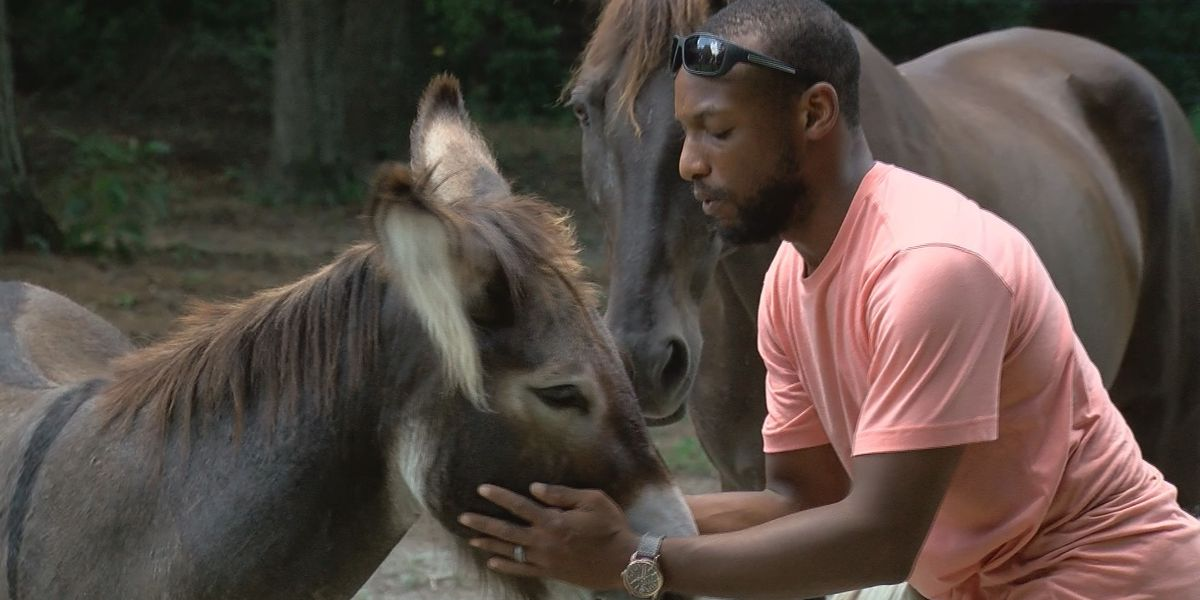 'It started as a joke': Sumter man speaks about viral video of donkey singing along to 'The Lion King'